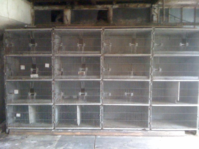 Clapier beton trouvez le meilleur prix sur voir avant d 39 acheter - Clapier lapin beton ...