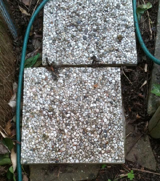 Photo beton jardin