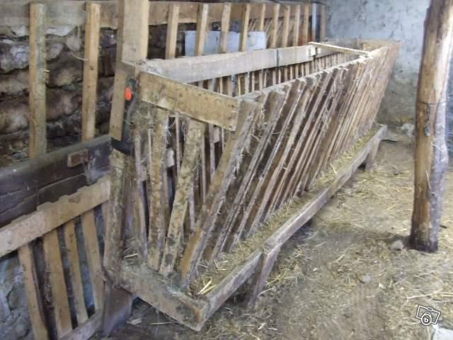 Photo ratelier en bois pour brebis ancien mais peut en - Achat de bois en ligne ...