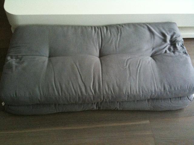 Photo donne 2 gros coussins de sol gris clair en bon t for Gros coussin de sol exterieur