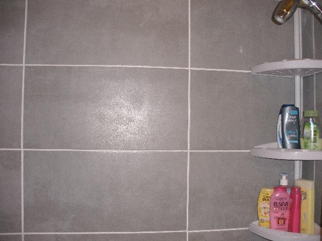 Photo donne 12 carreaux carrelage gris clair 30x60 soi for Carrelage gris clair