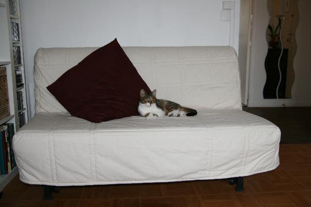 photo donne bz ik a de 2005 avec sa housse crue id al. Black Bedroom Furniture Sets. Home Design Ideas