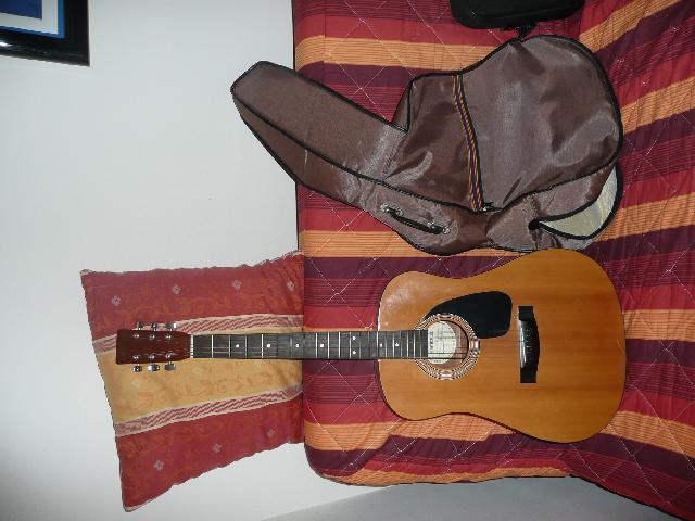 guitare acoustique samick