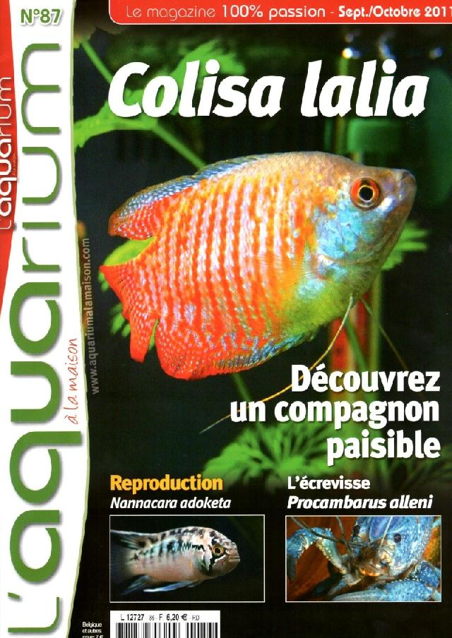 Photo revues l aquarium a la maison for Aquarium a la maison pdf