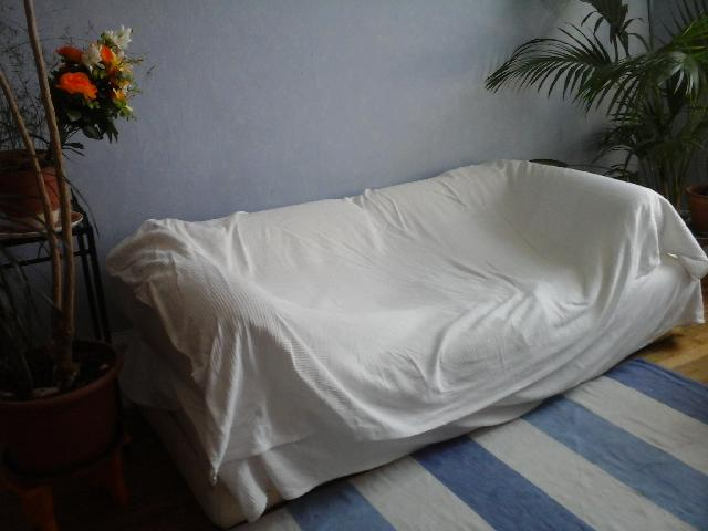 Photo Canape Matelas